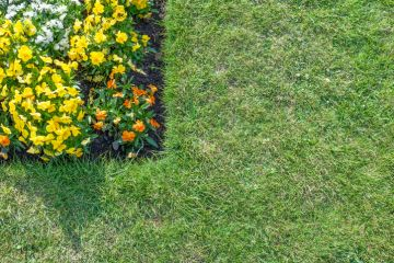 Lawn Edging by J Landscaping