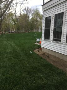 Before and After Lawn Installation in Winchester, MA (8)