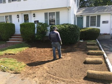 Before & After Sod Installation in Stoneham, MA (1)