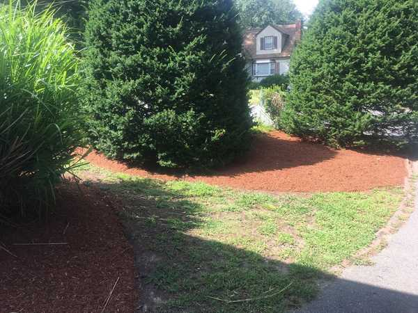 Landscaping in (5)