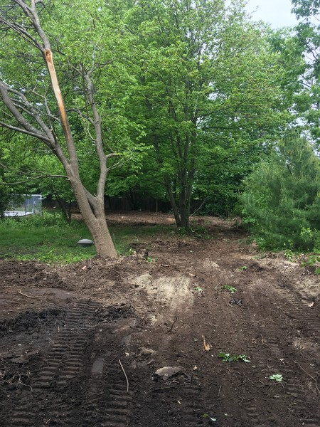 Land Clear in Andover (1)